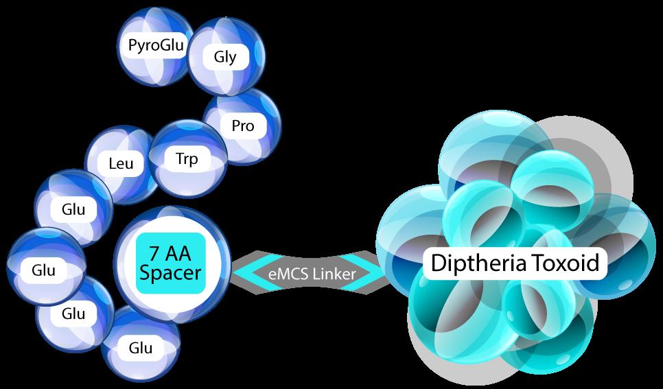 G17 Peptide PAS